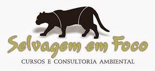 cursos_online_selvagem_em_foco