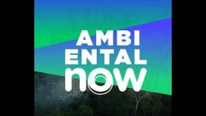 ambiental_now_2020