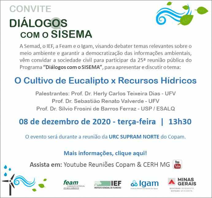 dialogos_com_sisemana_cultivo_eucalipto